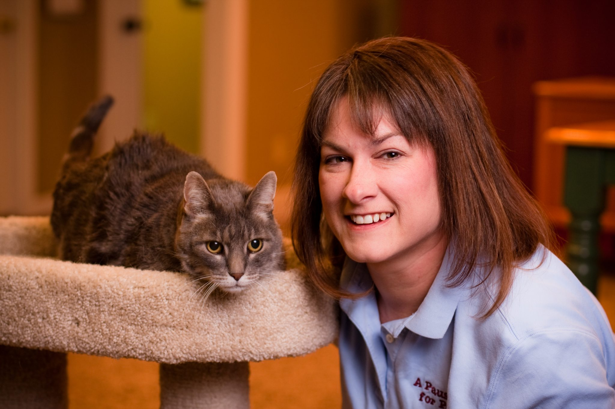 [Case Study] Pet Sitter Audited By The State Twice And Told Two Different Things!