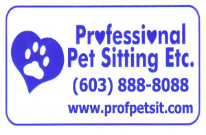 pet sitter business coaching